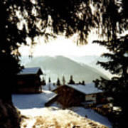 Chalet Through The Trees Poster