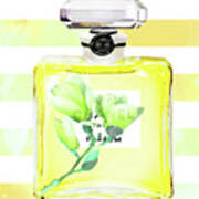 Chanel Magnolia Flower Poster