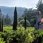 Chapel In The Napa Valley Vineyards Poster