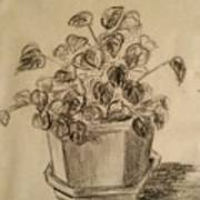 Charcoal Planter Poster