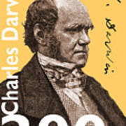 Charles Darwin 200 Yellow Poster