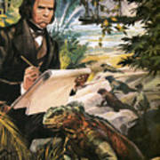 Charles Darwin on the Galapagos Islands Poster