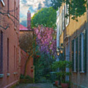 Charleston Alley In The Spring Poster