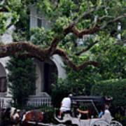 Charleston Buggy Ride Poster