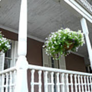 Charleston Historical District Front Porch Flowers - Charleston Homes Architecture Poster