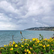 Charmouth Overlook Poster