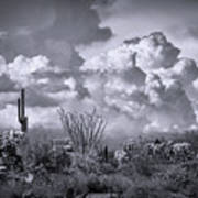Chasing Clouds Again In Black And White  Poster