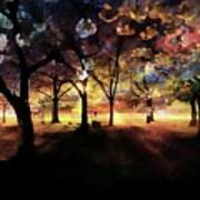 Cherry Blossom At Night Poster