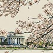 Cherry Blossom Tidalbasin View Poster