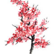 Cherry Blossom Watercolor Poster Poster