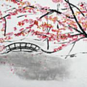 Cherry Blossoms And Bridge II Meadowlark Botanic Gardens 201729  Poster