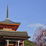 Cherry Blossoms And Kiyomizu-dera Poster