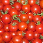 Cherry Tomato Harvest Poster