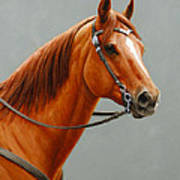 Chestnut Dun Horse Painting Poster by Crista Forest