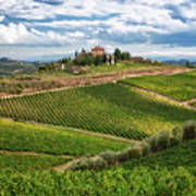 Chianti Landscape Poster