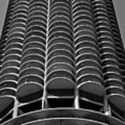 Chicago Corn Poster by Miranda  Miranda