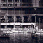 Chicago River Boats Bw Poster
