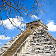 Chichen Itza And Tree Poster