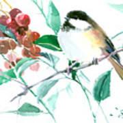 Chickadee And Berries Poster