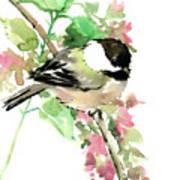 Chickadee And Spring Blossom Poster