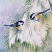 Chickadee Chat Poster by Patricia Pushaw