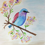 Chickadee On A Branch Poster