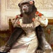Chimp In Gown  Poster