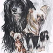 Chinese Crested And Powderpuff W/ghost Poster