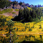Chinook Pass Poster
