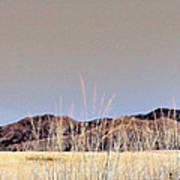Chiracahuas Panorama Poster