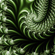 Chlorophyll Poster