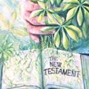 Christian Artist Rooted In The Word Poster