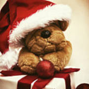 Christmas Teddy Bear Poster by Wim Lanclus