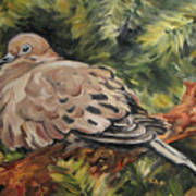 Christmas Turtle Dove Poster