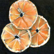 Circle Of Orange Poster by Penny Everhart