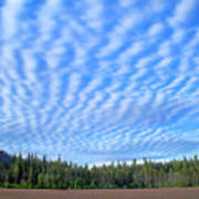 Cirrocumulus Clouds Over Mt. Mclaughlin Poster