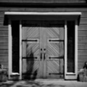 Classic Doors Poster