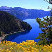 Cleetwood Cove At Crater Lake Poster