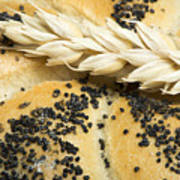 Close Up Bread And Wheat Cereal Crops Poster