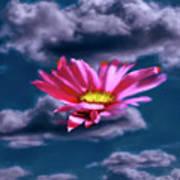 Cloud Flower.  Poster