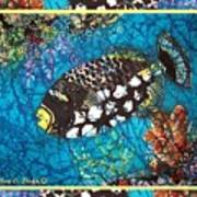 Clown Triggerfish-bordered Poster