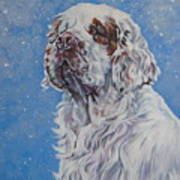 Clumber Spaniel In Snow Poster