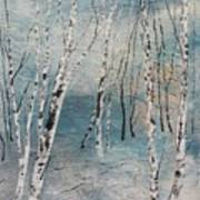 Cluster Of Birches Poster