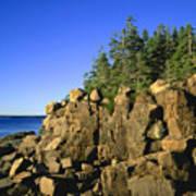 Coastal Maine Poster by John Greim