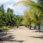 Coconut Beach Poster