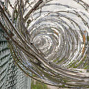 Coiled Razor Wire On Fence Poster