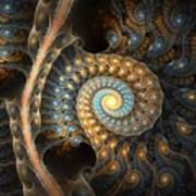 Coiled Spirals Poster