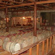 Colchagua Valley Wine Barrels Poster