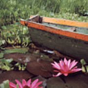 Colombian Boat And Flowers Poster