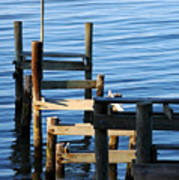 Colonial Beach Pilings Poster
